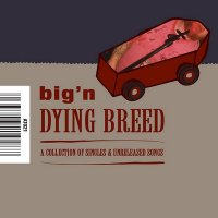 27/01/2011 : Big 'n - Dying breed : a collection of singles and unreleased songs
