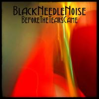 28/03/2017 : Black Needle Noise - Before The Tears Came
