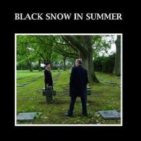 06/02/2021 : Black Snow In Summer - Lost Feelings
