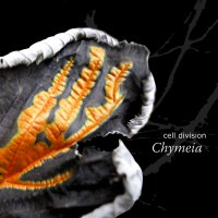 15/10/2009 : Cell Division - Chymeia