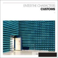 10/01/2010 : Customs - Enter the Characters
