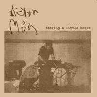 31/01/2017 : Dieter Müh - Feeling a little horse