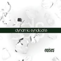 15/12/2012 : Dynamic Syndicate - Noises