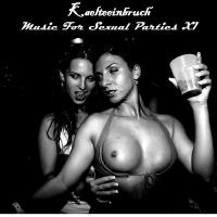 20/12/2016 : Kaelteeinbruch - Music For Sexual Parties XI