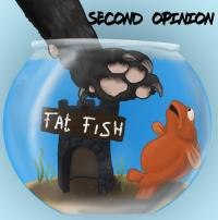 01/11/2016 : Second Opinion - Fat Fish