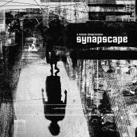 07/08/2020 : Synapscape - A Mutual Disagreement