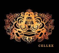 23/12/2014 : The Narcotic Daffodils - Cellex