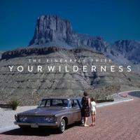 09/08/2016 : The Pineapple Thief - Your Wilderness