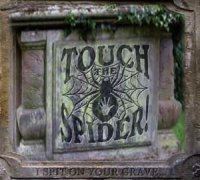 29/11/2009 : Touch The Spider! - I Spit On Your Grave