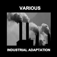 10/01/2017 : Verzamelaar - Industrial Adaptation (2CD)