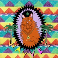 05/08/2010 : Wavves - King of the beach