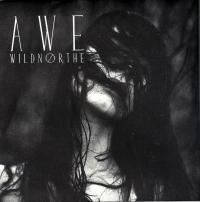 04/02/2016 : Wildnorthe - Awe (EP)